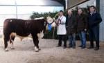 Top price bull Corlismore General 700 with Gary McKiernan & purchasers James, Edward & Ben Lewis, Dilwyn, Hereford, UK