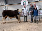 Drumgoon Hill Hercules with Martin Hughes purchasers @ _3,000 Michael & Dillon Lynch and owner Aidan McCabe in background
