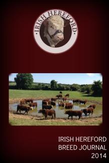 Irish breed journal 2014