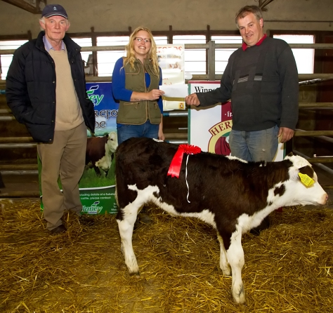 The Champion Heifer Calf in the Irish Hereford Society Calf Show and Sale in Golden Vale Mart, Kilmallock on Easter Monday with: Donal Mullins, Judge, Emma Ward and owner Mossie Dwane, Kilmallock