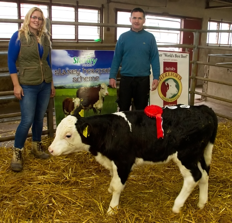 Emma Ward with the owner of the Champion Bull Calf in the Show and Sale held in Golden Vale Mart, Kilmallock on Easter Monday, Denis Guuuerin, Freemount, Charleville, Co. Cork