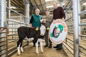 champion heifer which sold for €215 with Pat McCarthy, Hereford Council Member, Oliver Manley representing owner Corneilus Cronin, Carrignavar & Ted O'Sullivan, Bartlemy, Hereford Breeder.