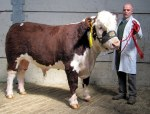 Moyclare Lucrative with Michael Molloy E3,050