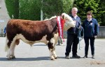 Champion Glosterbeg 263 with owners David & Davina Lewis €2,800