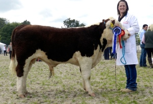 Gurteragh Maximus - 1st & Reserve Supreme Hereford Champion pictured with Eileen O' Keeffe (breeder)