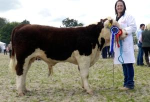Gurteragh Maximus - 1st & Reserve Supreme Hereford Champion pictured with Eileen O' Keeffe (breeder)