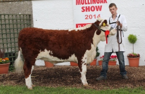 1st prizewinner Corran Hill Annabell with Colin Anderson