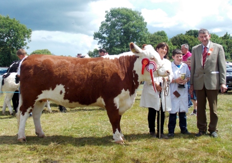 HEREFORD Supreme Champion at Dunmanway:  Dunworley Goldie with owner exhibitor Mary Pat Dineen & Son