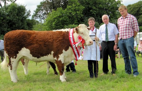1.Supreme Champion& Champion cow Kilsunny Doreen's Ivy with owner Christine Drumm, Judge Eric Humphreys and Irish Hereford Society President Ivor Deverell.