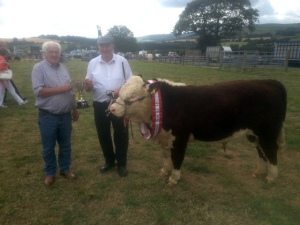 1 Michael Coady presenting the trophy for Champion Hereford to Henry Parr