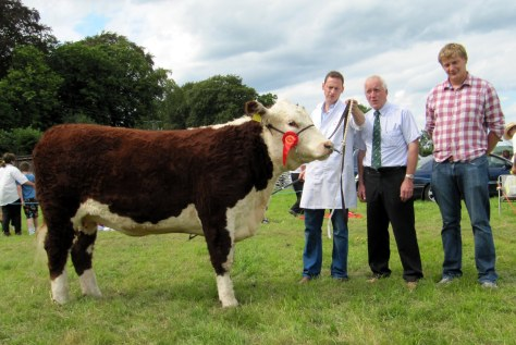 2.Reserve Champion and winner of the Dr Michael Harty Cup Griananpoll Orange with owner Anselm Fitzgerald, Judge Eric Humphreys and Irish Hereford Society President Ivor Deverell.