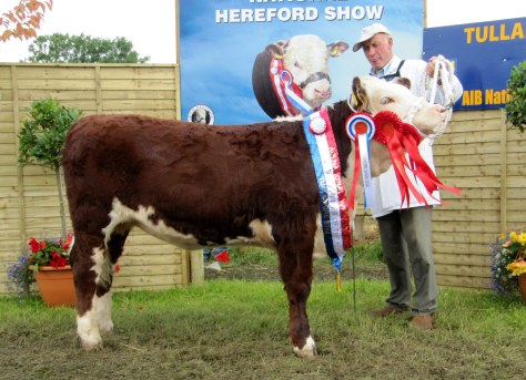 Reserve Supreme Champion Knockmountagh Cindy with owner Eamon McKiernan