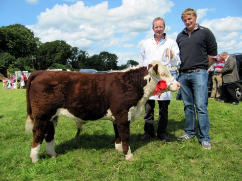 6.1st prize-winner Clondrina 1113th with Declan Donnelly and Ivor Deverell President of sponsors the Irish Hereford Society.