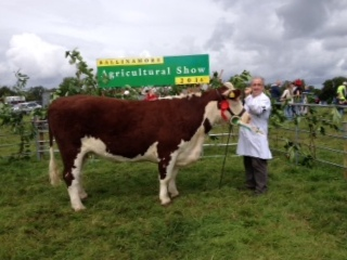 Champion Hereford Ballinamore Show Baleen Pansy 643 with Tom McDermott