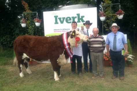 Champion Hereford exhibited by John Murphy, with Judge Denis Collins, represenative of the sposors  Callan co-op and Walter Walshe Show Chairman