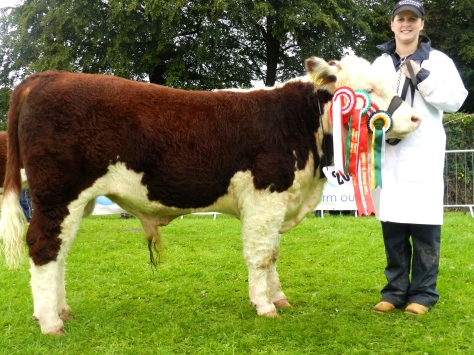 Munster Junior Bull of the year with Eileen O'Keeffe
