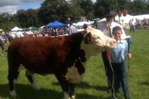 Winner of the young handler competition. Patrick Kinsella with Judge Denis Collins.