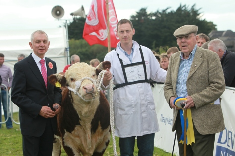1st prizewinner Grianan Nobleman with Judge Robin Irvine, owner Anselm Fitzgerald and class sponsor Jack Canty