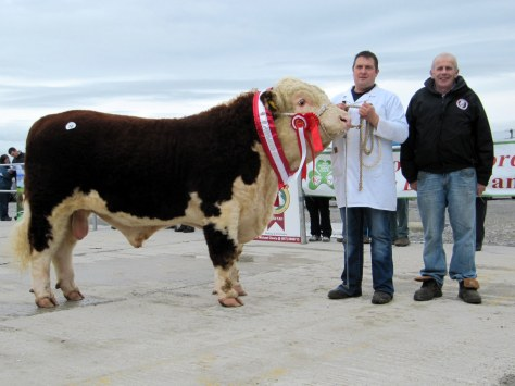 Champion Glaslough Magnum with owner Nigel Heatrick and IHBS Chairman Willie Branagan