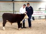 New breeder Andrew Hanbidge is interviewed in the young handler class by Judge Ivor Deverell