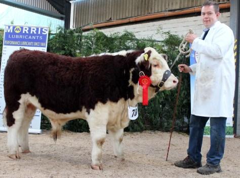 1st Prizewinner Rossmore Kestrel with owner Cathal Flynn