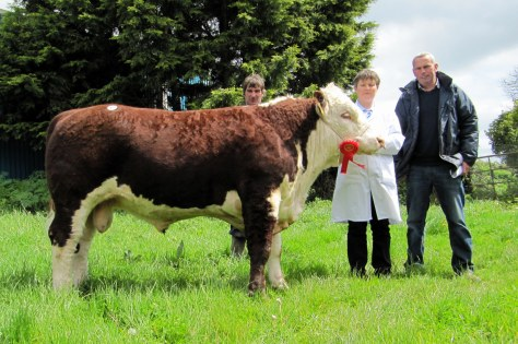 Crowenstown Charlie €3,250 with owner Christine Drumm and purchaser Liam Tierney