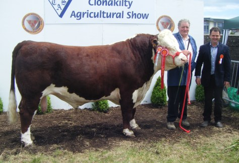 1.Overall Hereford Champion Knockmountagh Duke with Owner Tom Roycroft and judge Matthew Goulding.