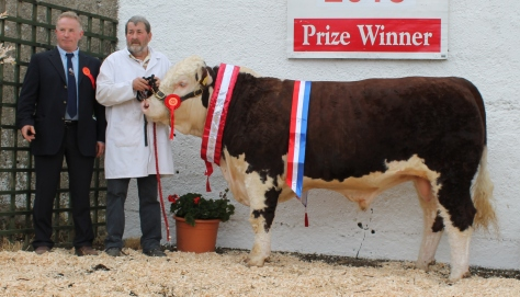 1Champion Mullaghdoopoll 1 Elite with judge David Larkin and owner Basil Arnold