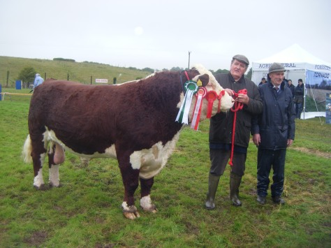 Overall Hereford Champion & Reserve Beef Interbreed Champion, Knockmountagh Duke with owner Tom Roycroft and Judge Derek Lovell