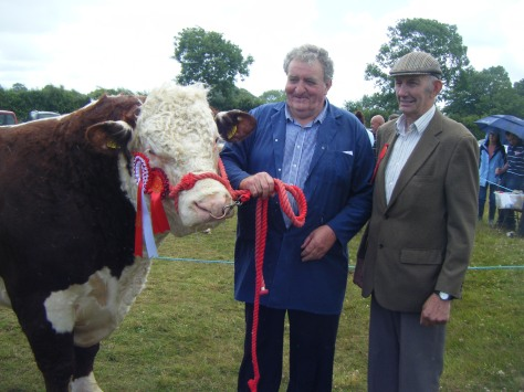 Overall Hereford Champion Knockmountagh Duke with Tom Roycroft and judge Tom Ludgate