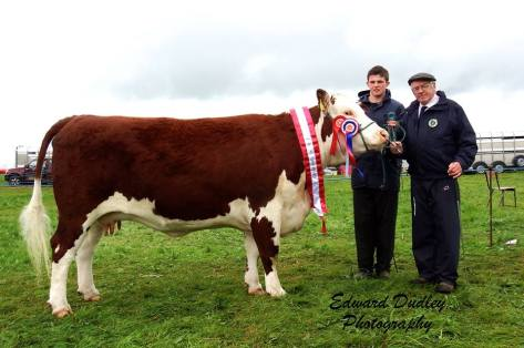 Supreme Hereford Champion 'Lakelodge Kathy 5' with Glenn Dudley (exhibitor) and Martin Murphy (judge)