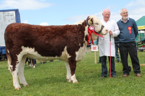 Reserve Champion Cloonshannagh 1 Hanna 657.