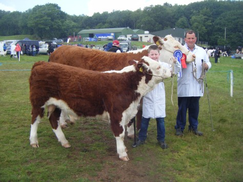 Reserve Overall Hereford Champion Dunworley Goldie shown by PJ and Jim Maloney