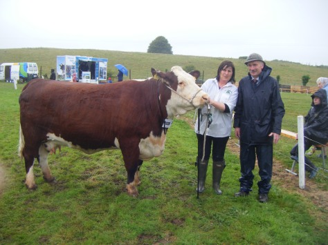 Reserve Overall Hereford Champion Dunworley Krystal with owner Mary Pat Dineen and Judge Derek Lovell