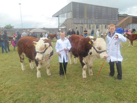 Conor and Padraic Jones exhibiting at Wexford County Show