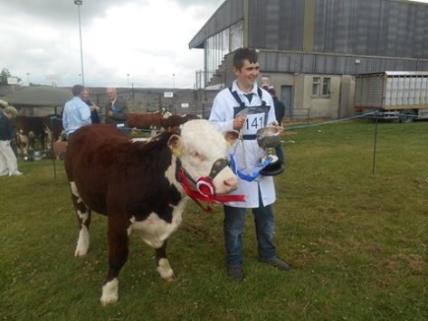 Junior Champion at Wexford County Show: Niall Jones with Knockduff Polly Ginger ET