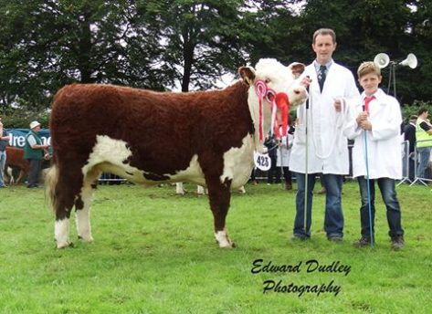 Munster Senior Female of the Year 2015 - Clouncagh Joanne 4 with John & Jack O' Connor (exhibitors)