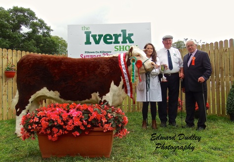 Supreme Hereford Breed Champion - 'Lakelodge Kathy 5' with Susan Dudley (exhibitor), Henry Parr, rep of South Leinster Hereford Branch) & Martin Murphy Judge