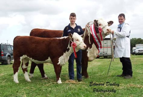 Supreme Hereford Champion 'Gouldingpoll 1 Duchess 548' owner Matthew Goulding & Jack Goulding (handler of her 6 month calf  'Gouldingpoll 1 Duchess 671'