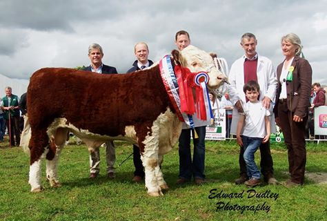 Supreme Hereford Breed Champion, Overall Male Champion & National Hereford Bull calf of the Year - Grianan Oscar with Tom Fitzgerald (exhibitor), Anselm Fitzgerald (exhibitor), Dara Fitzgerald (exhibitor), Hazel Timmis (judge) and sponsors.
