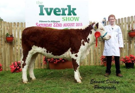 Best Young Handler - Conor Jones, Pallas, Gorey, Co. Wexford