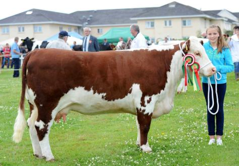 Corlismorepoll 1 Sydney 607- Champion at Ennis and Bansha Shows and Reserve Champion at Bridgetown Show shown by Ciara McNamara