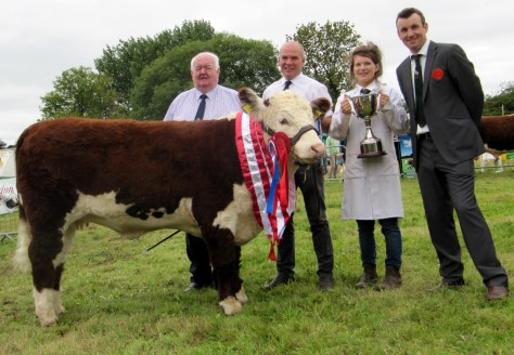 Supreme Champion Moyclare Rose 12th with IHBS President John Neenan, owner Michael Molloy, Catherine Smyth presenting the Ardmulchan Trophy and judge Tony Bradstock UK