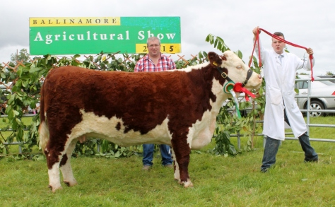 Reserve Champion Hurley Hill Jasmine with David & Kevin McKeown