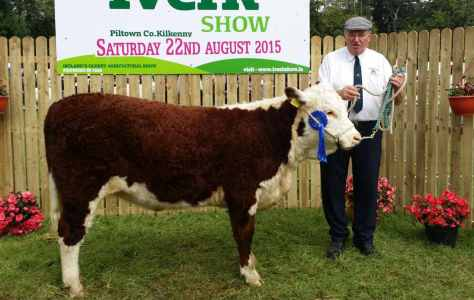 Reserve Champion Female 'Tourtane Queen Lorraine' with Henry Parr, exhibitor