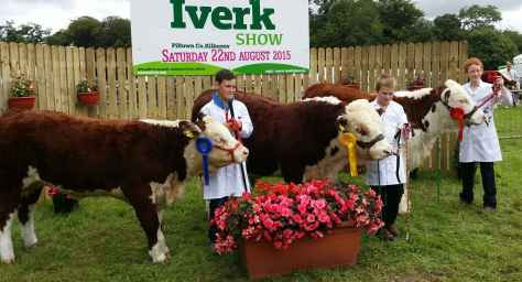 Young Handlers in action at Iverk Show Conor Jones, Padraic Jones and Darren Prendergast