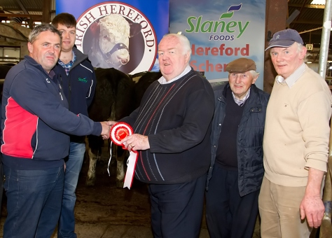 At the recent Irish Hereford Society Store Cattle Show and Sale: Eric Humphreys, John Foley, Ballyhea, Co. Cork, owner of the Champion bullocks, Denis Brennan, representing sponsors Slaney Foods, John Neenan, President Irish Hereford Sociey, Tom Foley, John's father and judge Doni Mullins. Photo Ita West