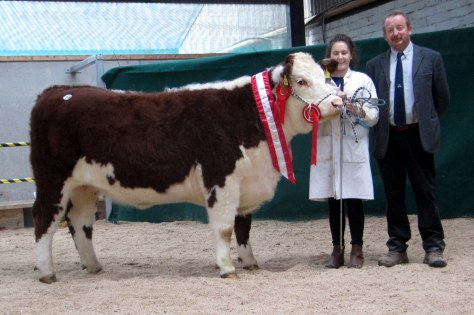 Champion Female Lakelodge Champayne 3rd, Henry Dudley shown by Susan Dudley with event Judge Tom Brennan sold to Jim Kingston at €5,000