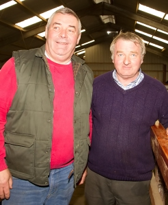 Peter O'Kelly, Croom with John Buckley, Buttevant, at the Irish Hereford Society Store Cattle Show and Sale in Golden Vale Mart, Kilmallock last Monday photo Ita West