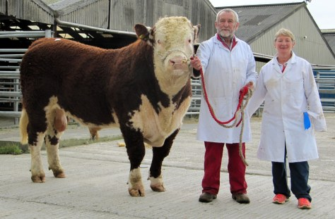 Fortregal Hadrian €3,000 with exhibitors Gerard and Sheila Lucey